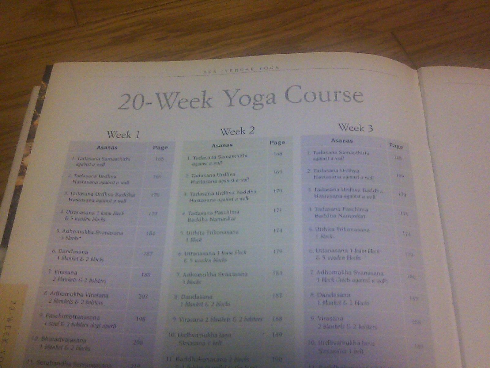 yoga the path to holistic health pdf